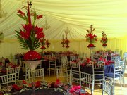 Marquee Hire Services in Salisbury